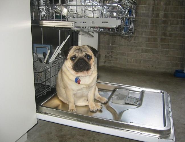 Tpt洗碗粉分享