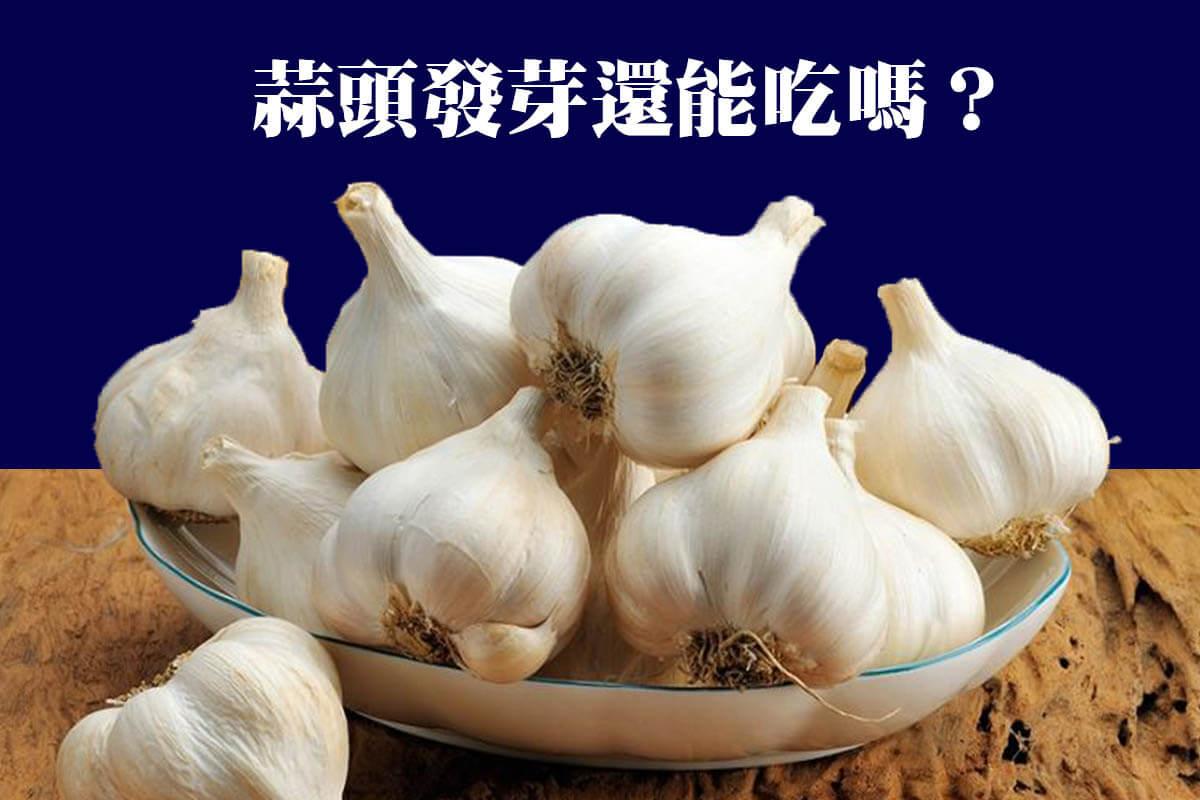 蒜頭發芽還能吃嗎 蒜頭如何保存